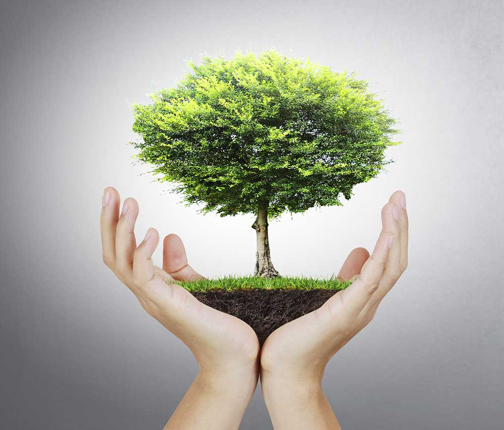 tree planting effects to the community essay Planting trees essay in english writing theme essay pte topics about hospital essay eid celebration essay about successful unity in community business and the environment essay ka writing essay 2 job interview essay writing styles service freelance, journals for creative writing vancouver islandto start with essay yourself sample argumentative essay samples ielts june essay about problem.