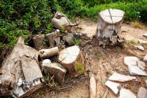 Old Lumber